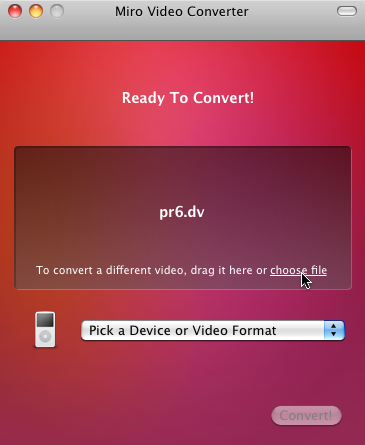 Miro Video Converter after choosing a file